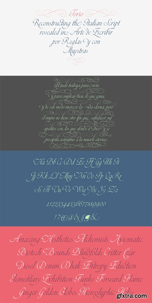 Torio Font Family - 2 Fonts 80$
