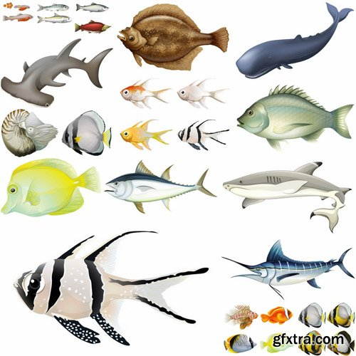 Fish Collection #2 - 25 Vector