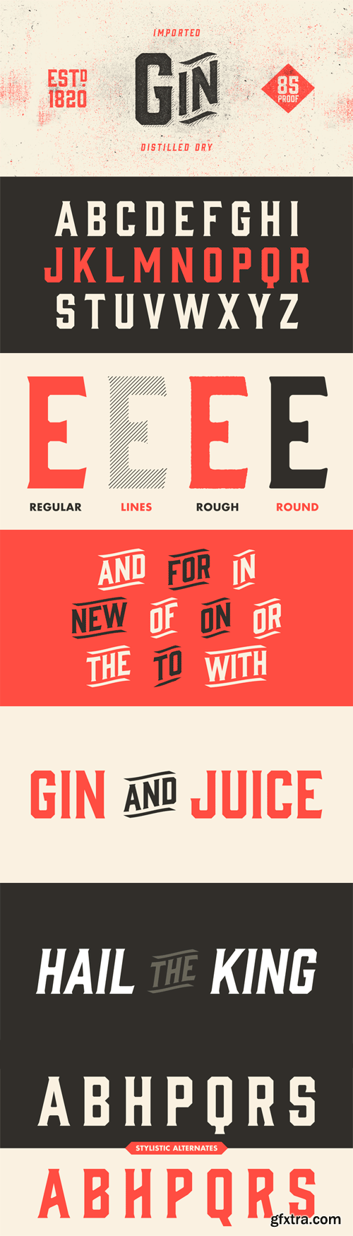 Gin Font Family - 8 Fonts for $45