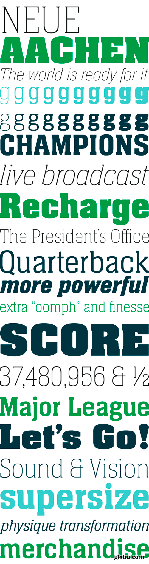 Neue Aachen Font Family - 18 Fonts for $630