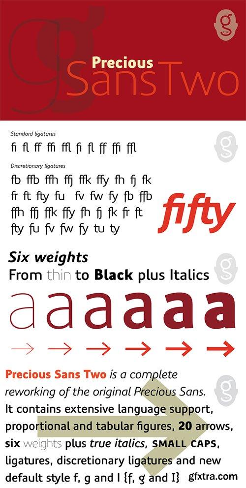 Precious Sans Two Font Family - 11 Font $720