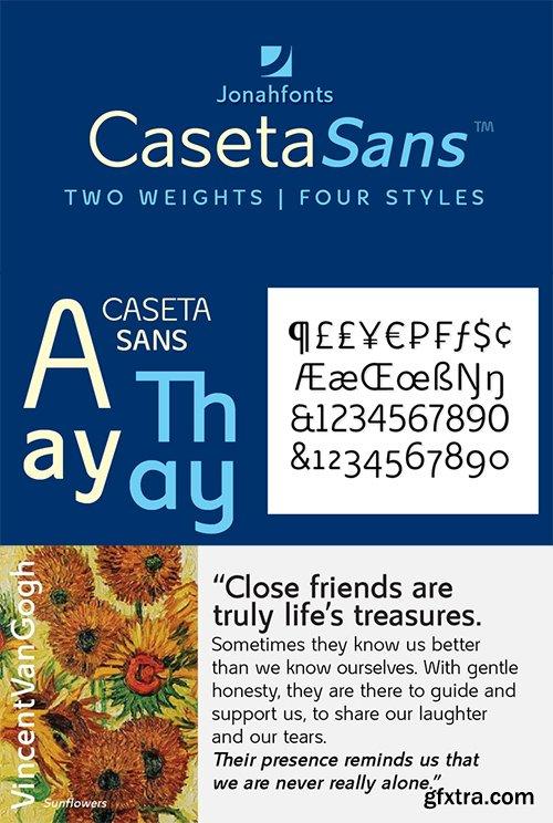 Casete Font Family - 12 Font $420