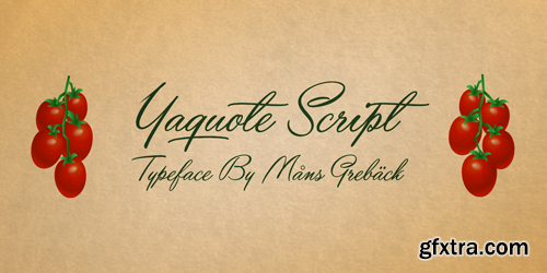 Yaquote Script Font for $59