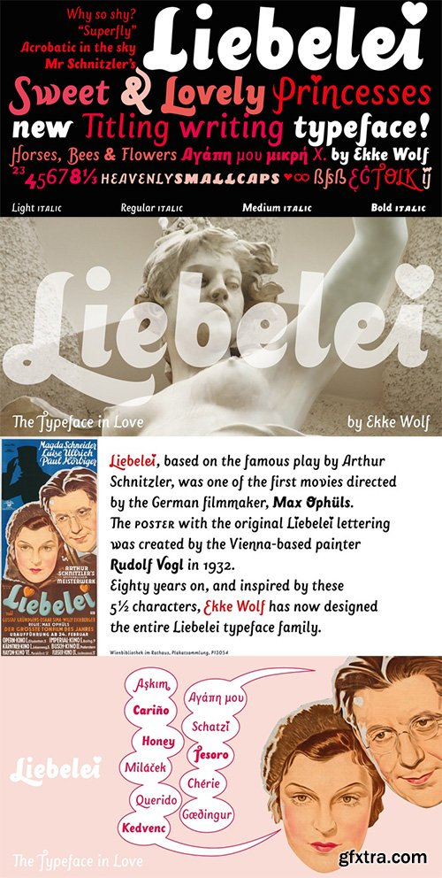 Liebelei Pro Italic Font Family - 4 Font $156