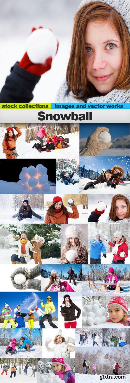 Snowball,25 x UHQ JPEG