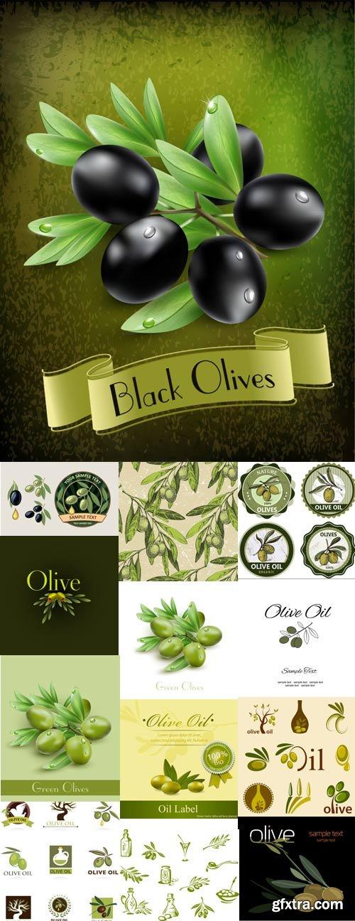 Green and black olives, olive oil