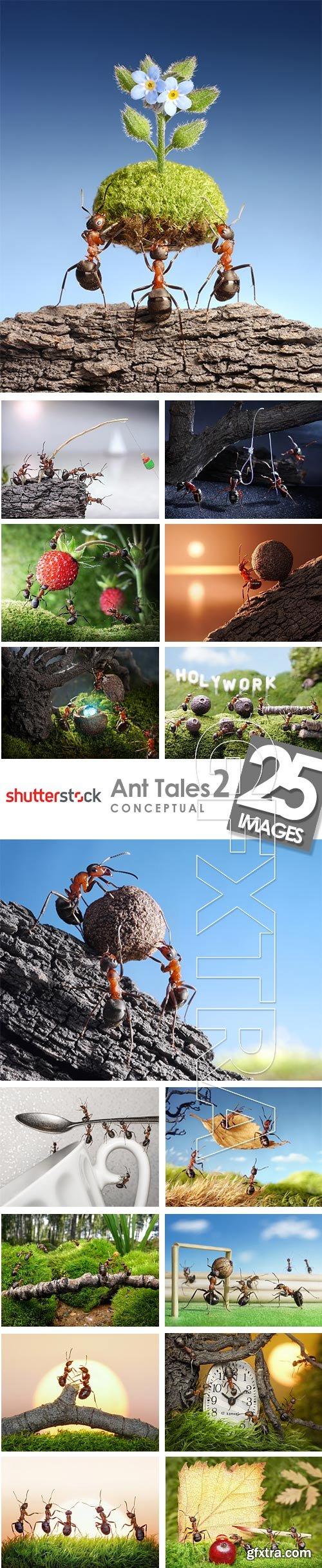 Ant Tales 2 - Conceptual Photo Art 25xJPG