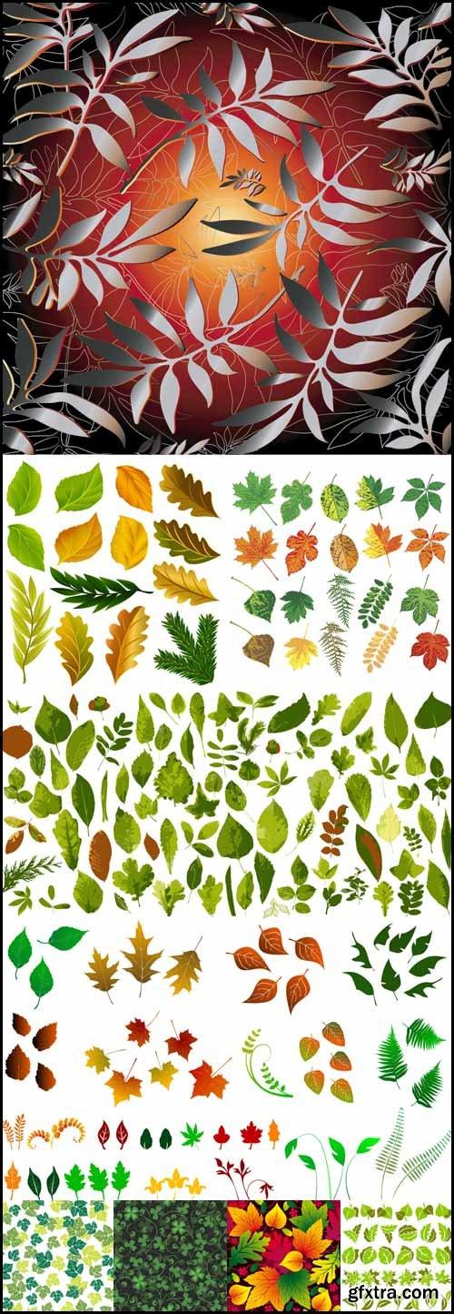 Shutterstock Leaves in Vector