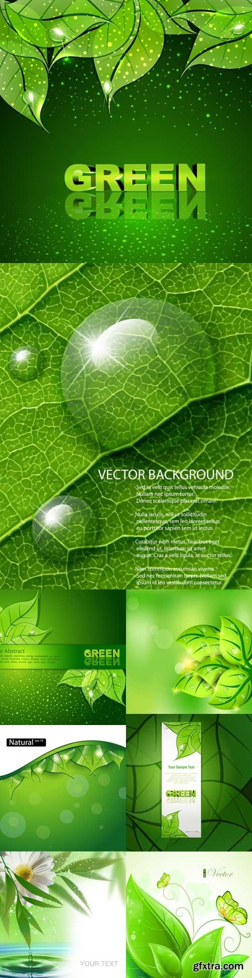 Green freshness backgrounds
