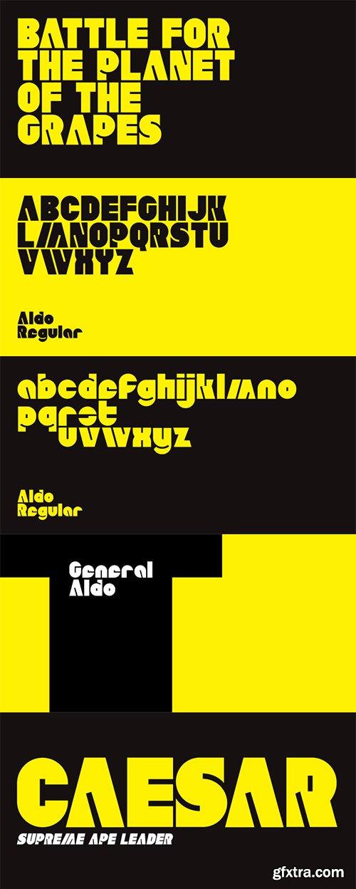 Aldo Font Family, 5 Fonts $89