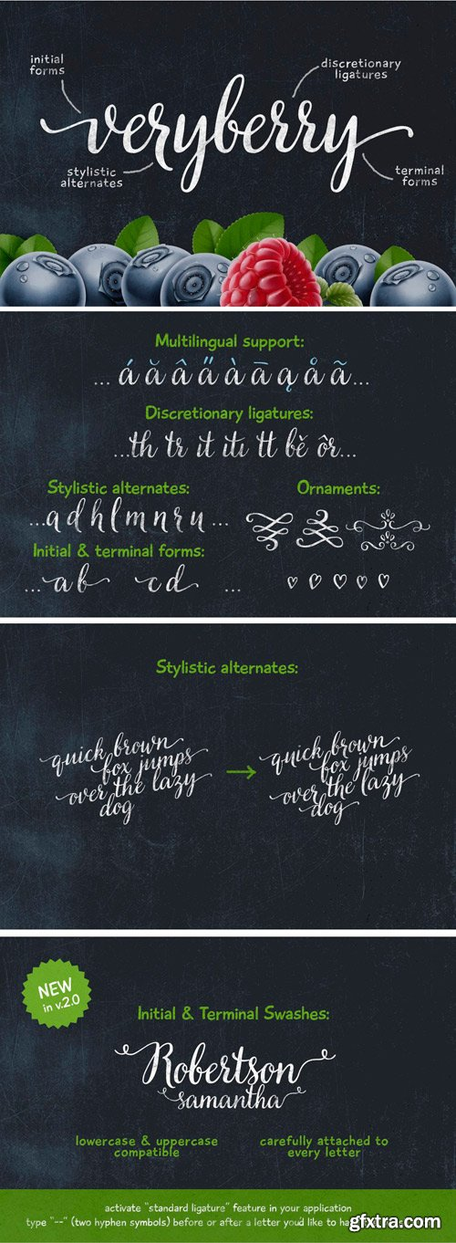 Veryberry Script Font for $25