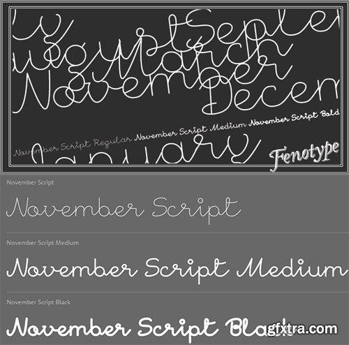 November Script Font Family 3xOTF $70