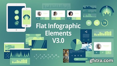 Videohive - Flat Infographic Elements V3.0 8498708