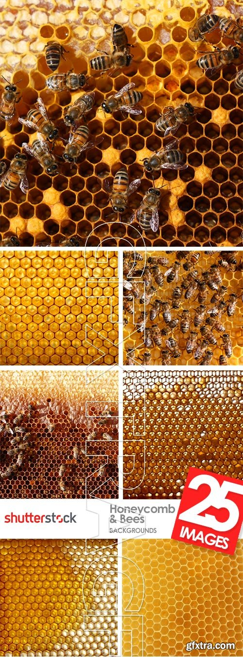 Honeycomb and Bees Backgrounds 28xJPG