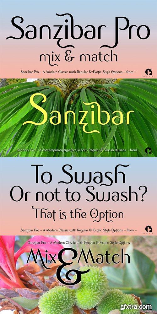 Sanzibar Pro Font Family - 2 Font $29