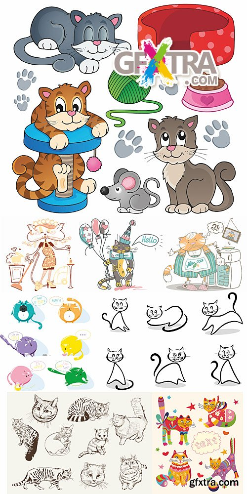 Home pet cats