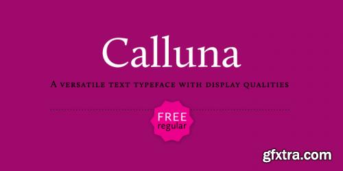Calluna Font Family 8xOTF $119