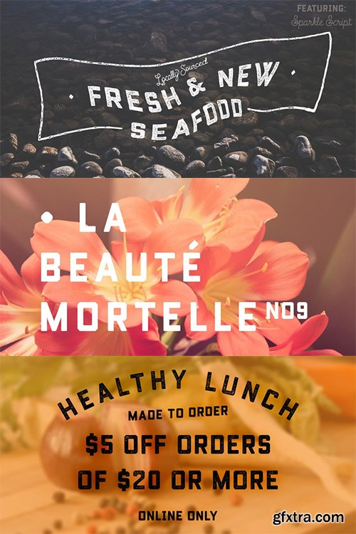 Conifer Font Family - 2 Fonts $30