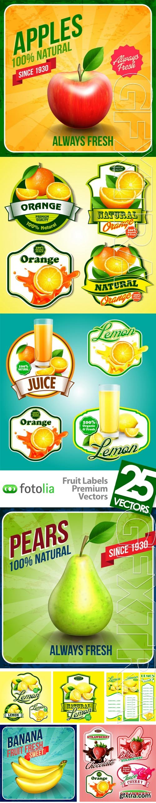 Fruit Labels Premium Vectors 25xEPS