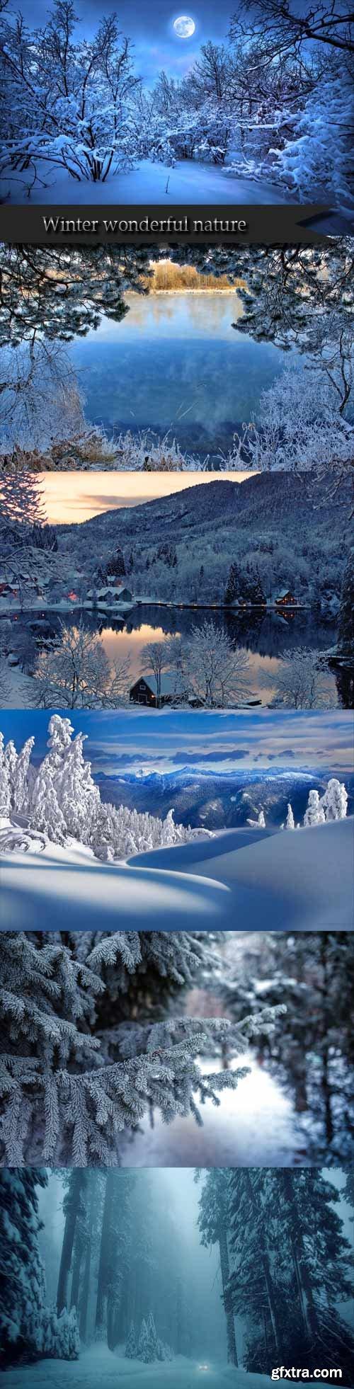Winter wonderful nature