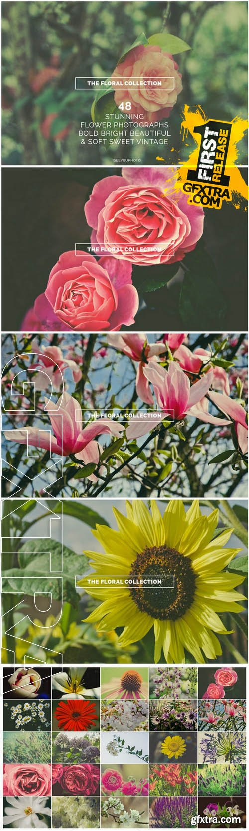 The Floral Collection - Iseeyouphoto - Creativemarket 63282