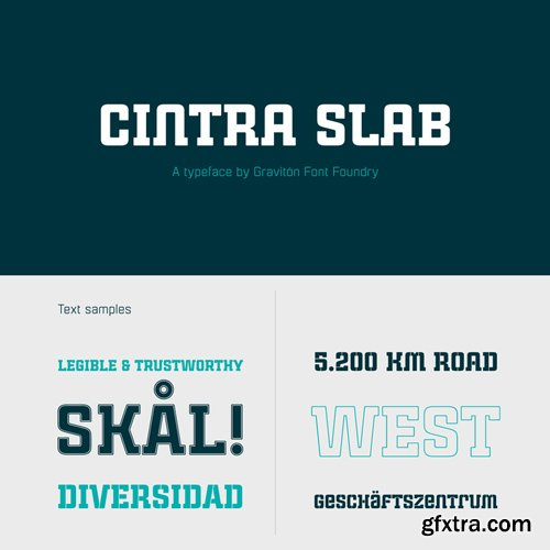 Cintra Slab Font Family $90