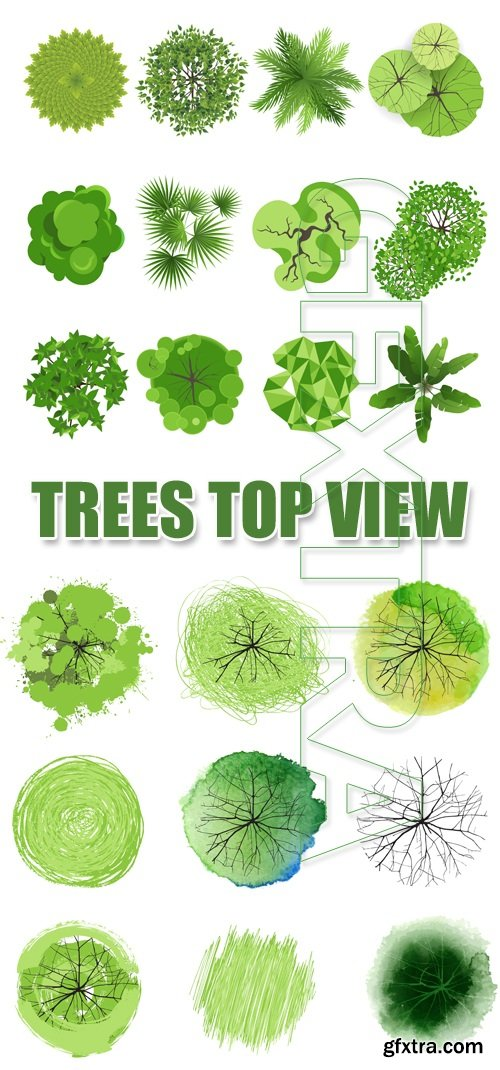 Green Trees Top View Vector