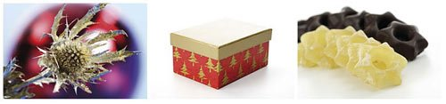 WestEnd61 Vol.151 Christmas Symbols