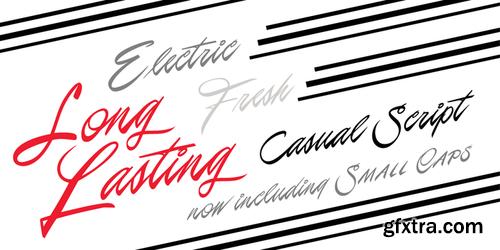 P22 Casual Script Font Family $50