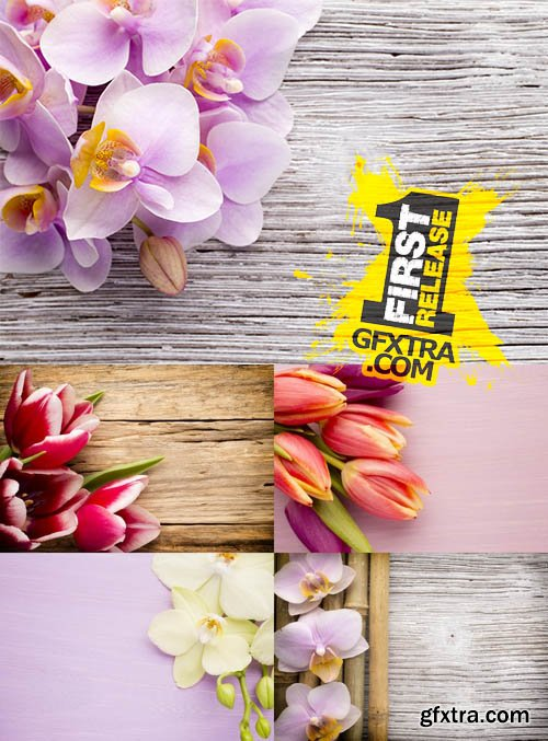 Stock Photos - Background with Flowers - Orchid & Tulip