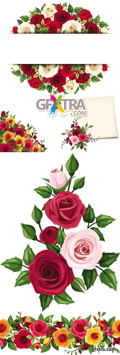 Roses Cards Vector