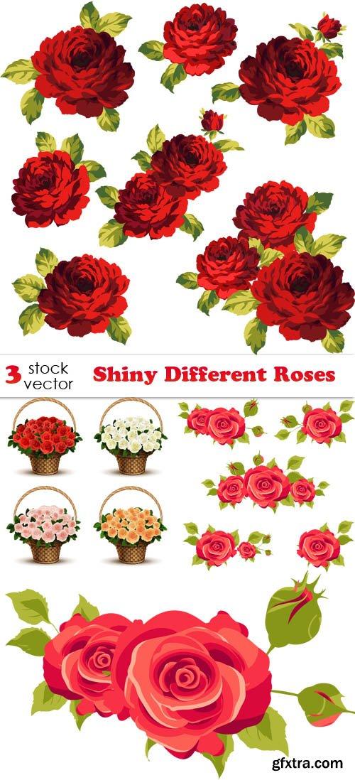 Vectors - Shiny Different Roses