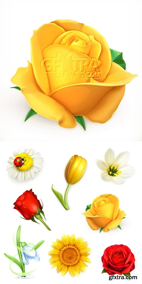 Realistic Flowers Vector 2