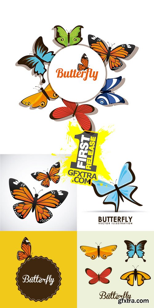 Vector - Butterfly
