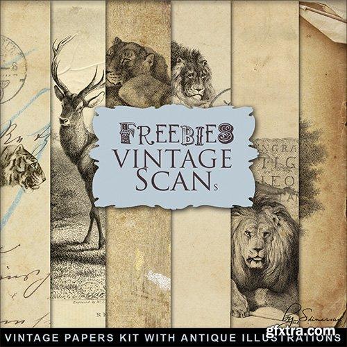 Scrap-kit - Vintage Paper With Antique Illustrations
