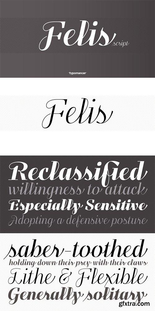 Felis Font Family - 5 Font $13