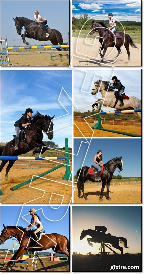 Equitation sportive, horse jumping, silhouette in sunset - Stock photo