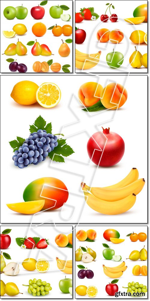 Big group of different fresh fruit - Vector