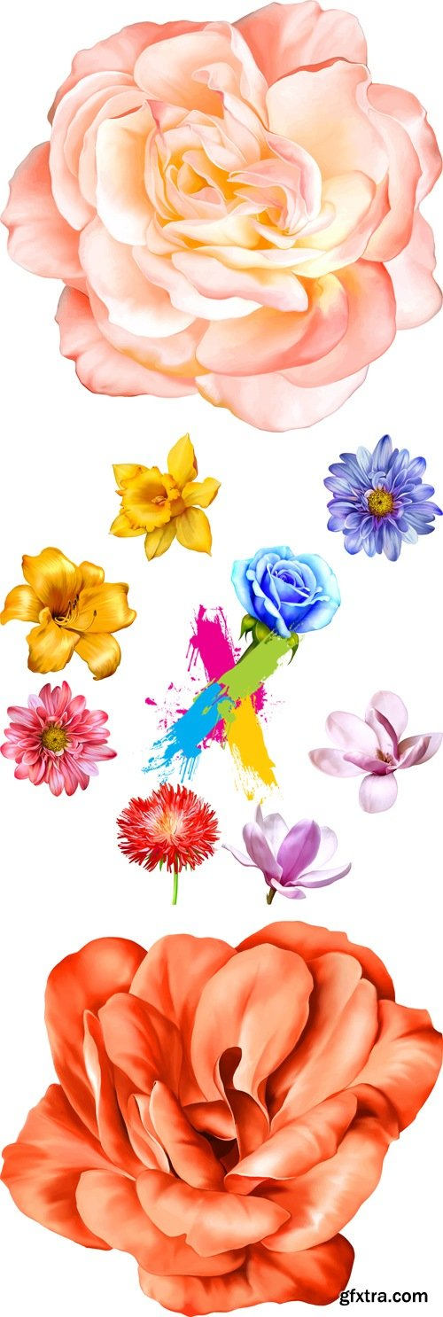 Realistic Flowers Vector 4