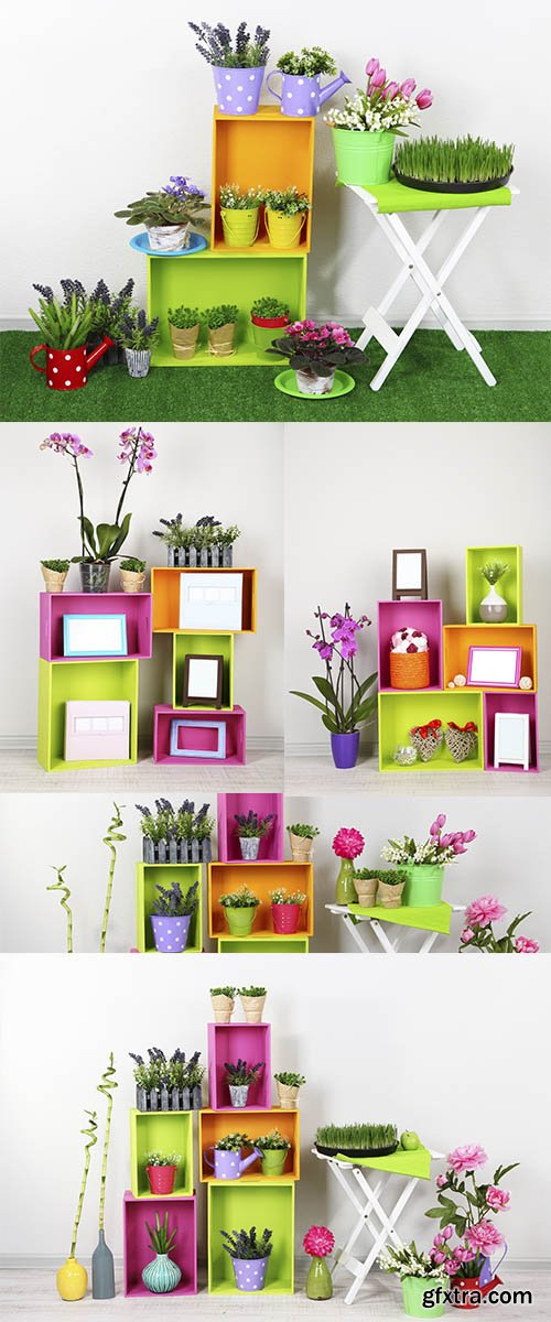 Stock Images Beautiful colorful shelves with different home related objects