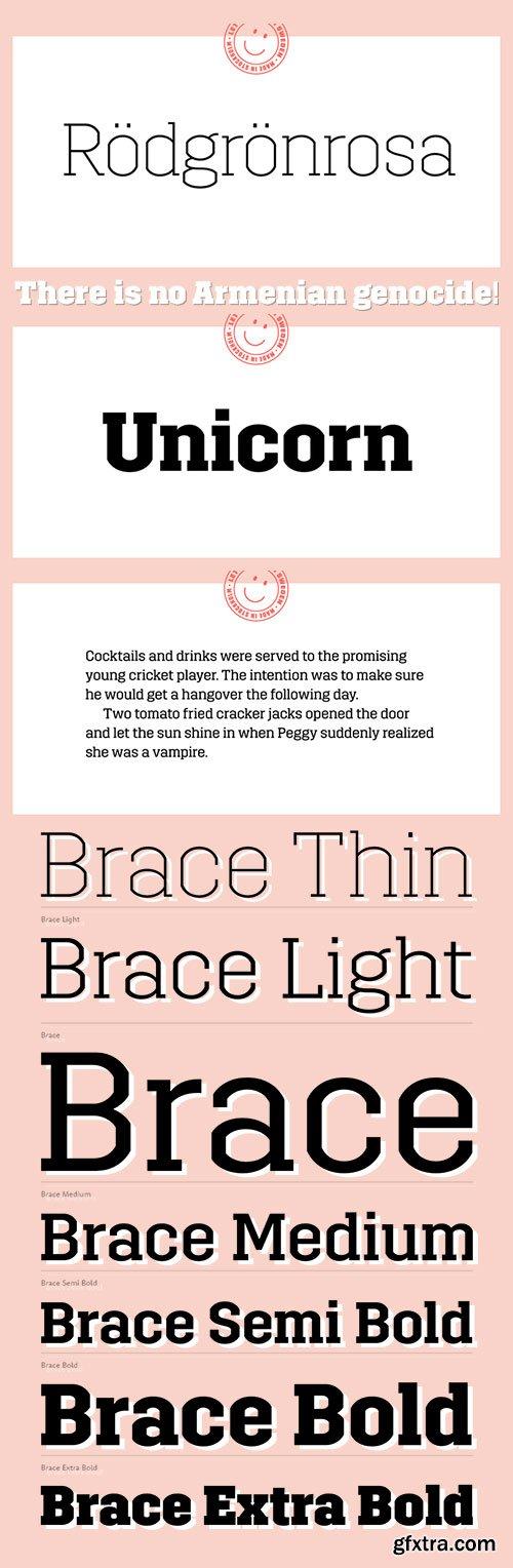 Brace - Constructed Slab Serif New Typeface 6xOTF $199