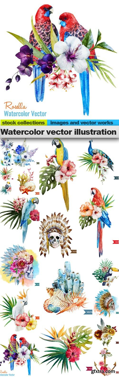 Watercolor vector illustration, 20 x EPS