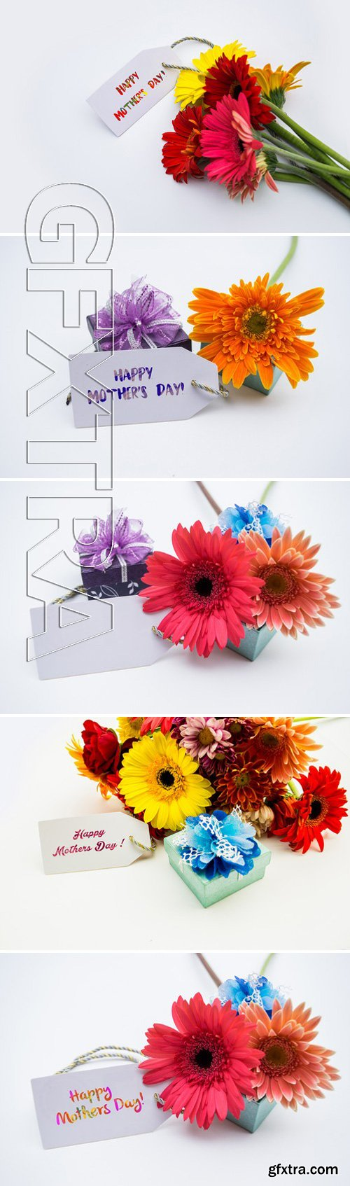 Stock Photos - Studio Macro Of Mother\'s Day Flowers With Soft Shadows Against A White Background