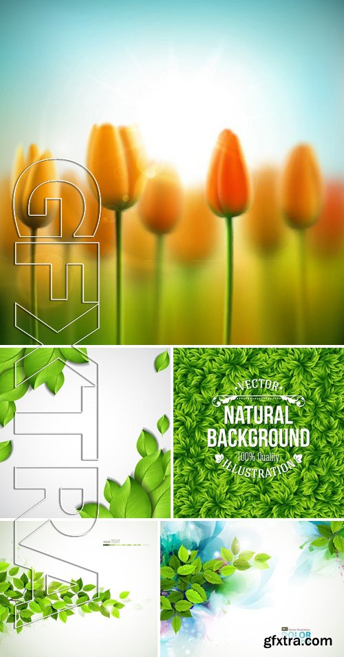Stock Vectors - Nature background 9