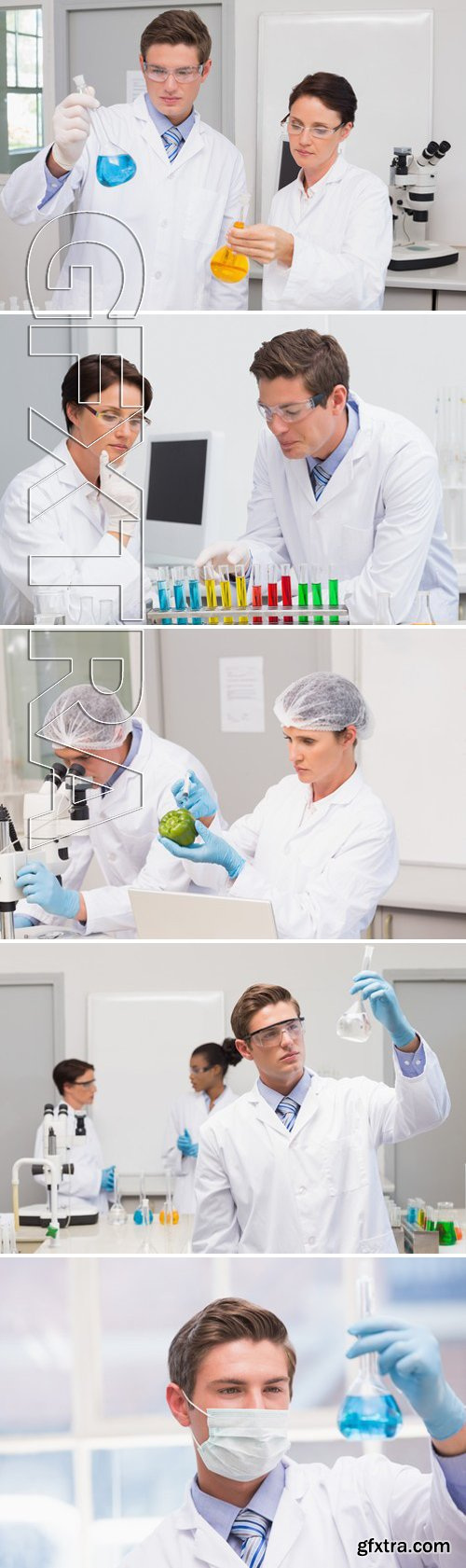 Stock Photos - Scientists working attentively with test tube in laboratory