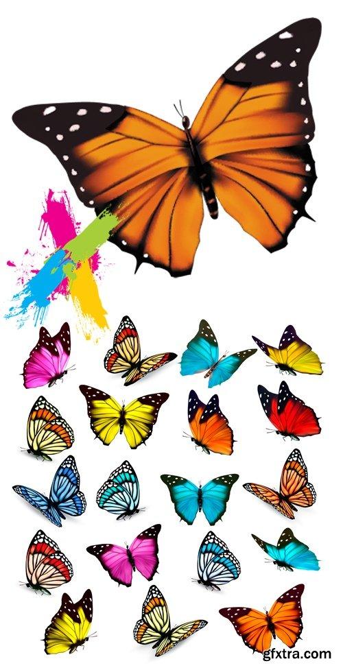 Butterflies Isolated Vector