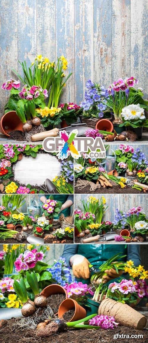 Stock Photo - Spring Gardening 3