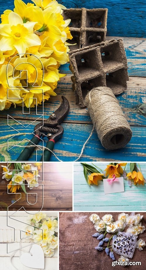 Stock Photos - Floral Background 66