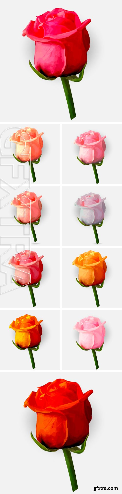 Stock Vectors - Rose blossoming bud isolated drawing vector illustration
