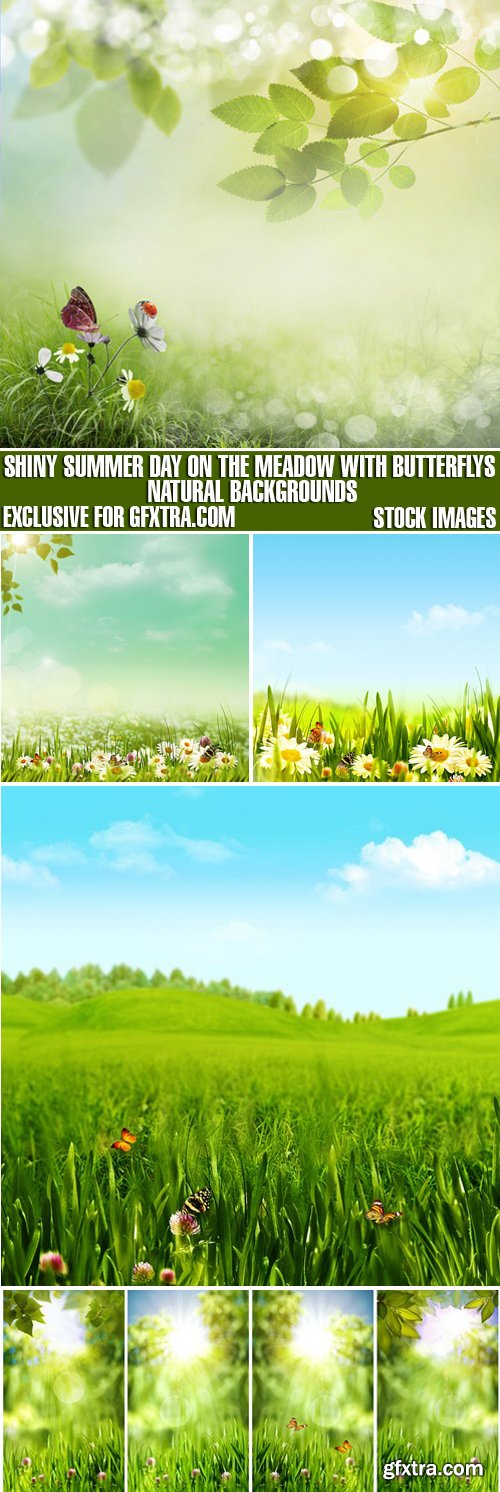 Stock Photos - Shiny Summer Day On The Meadow With Butterflys, Natural Backgrounds